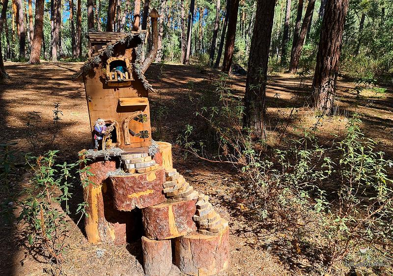 El Bosque Mágico de la Fuente del Pino (24)