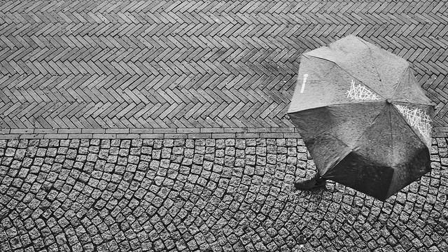 a new rainy day