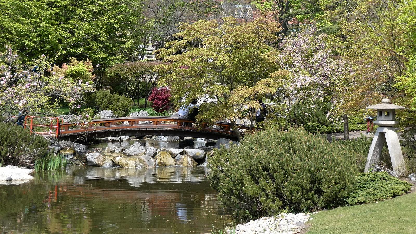 Japanse Tuin (Japanische Garten)