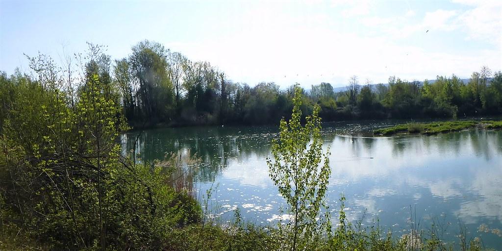 04.27.21.Réserve du Delta de la Dranse (France)