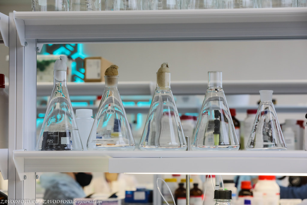 Как биотехнологическая компания «БиоПалитра» удивила весь мир 999A1687