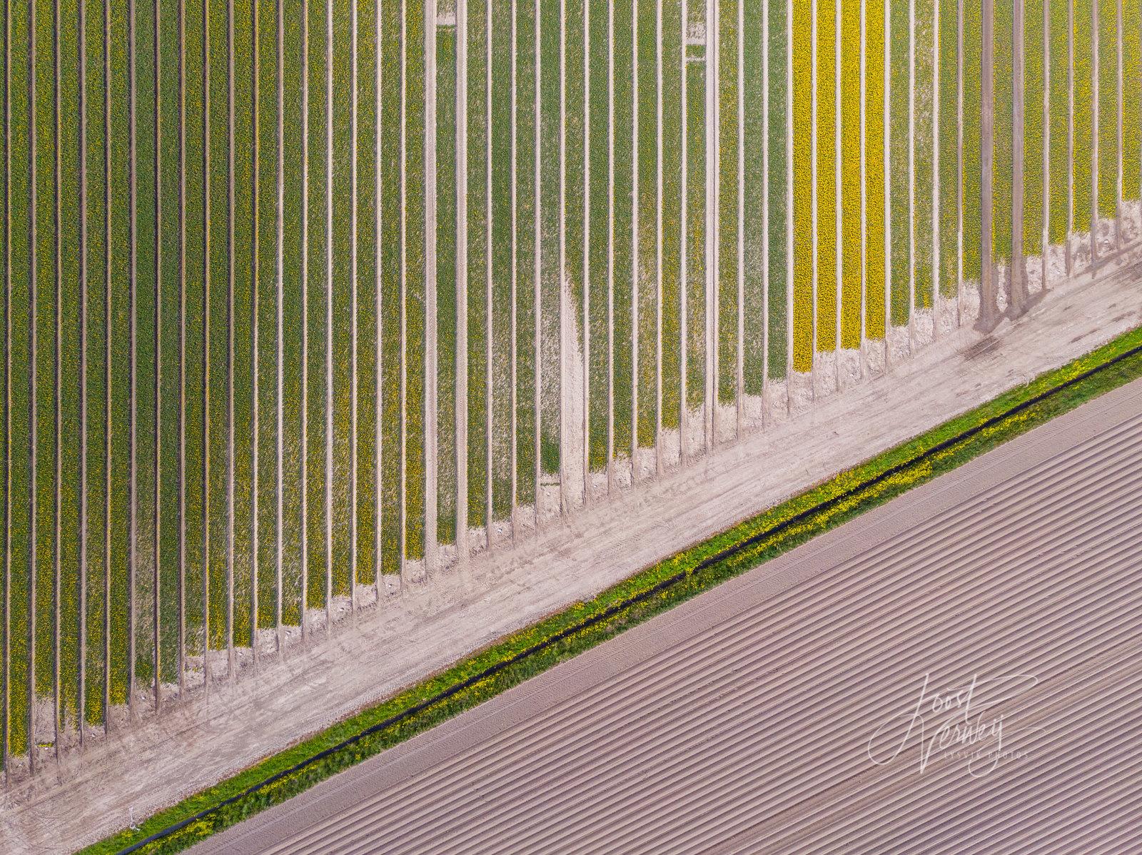 Landscape patterns #11