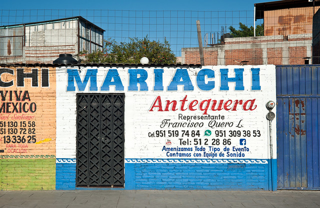 Mariachis for Hire, Oaxaca