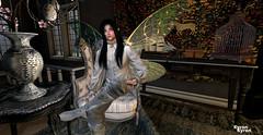 Malaci the fairy