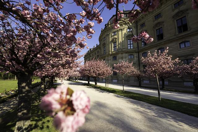 Hofgarten in Spring