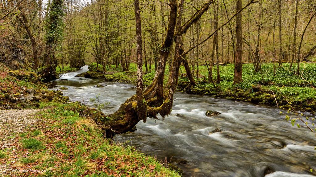 Proljetna šetnja uz potok Curak