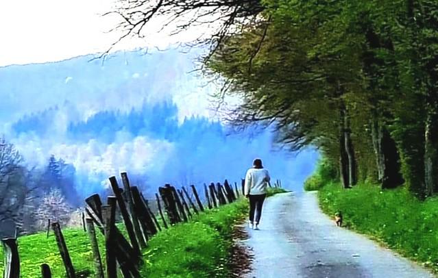 ~~ Sur mon petit chemin...~~
