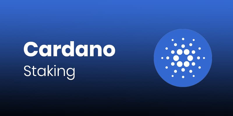 Cardano for Staking