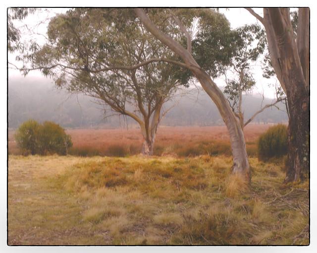 Barrington landscape... Explored May 2 2021