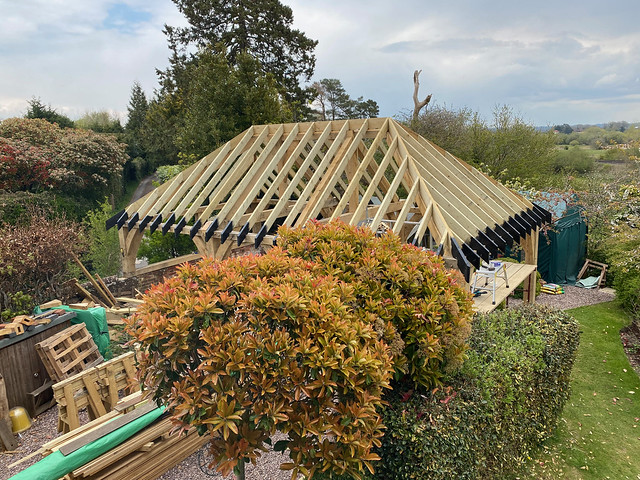 Softwood roof complete - 5