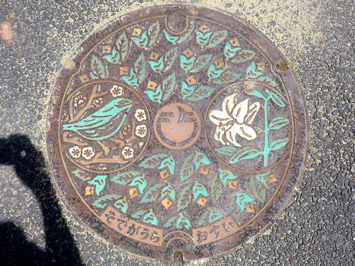 Sodegaura Chiba, manhole cover (千葉県袖ケ浦市のマンホール)