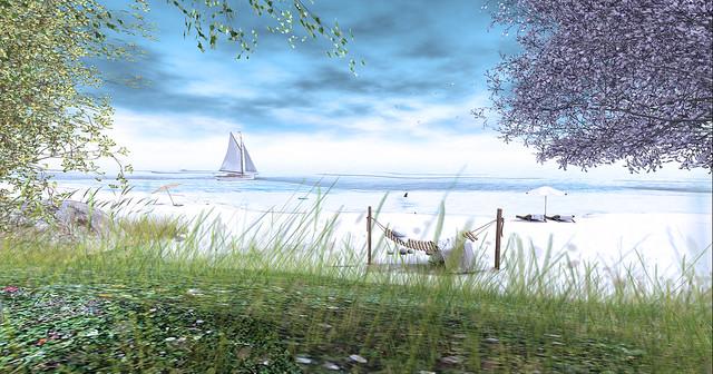 LUANE'S WORLD PHOTO CONTEST Spring 2021 - Beach Escape - 3