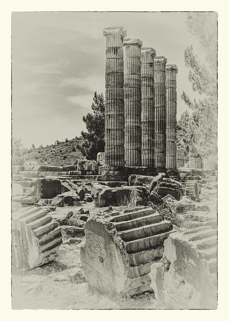 1550SEm  The Temple of Athena at Priene