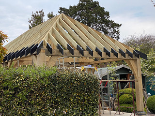 Softwood roof complete - 4