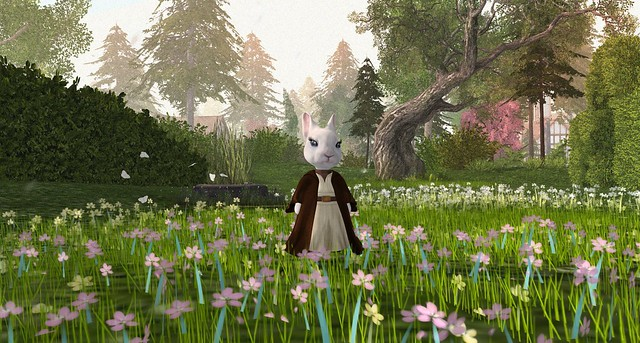 Mademoiselle Lapin loses her lightsaber in the grass