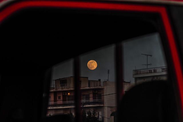 fat yellow moon