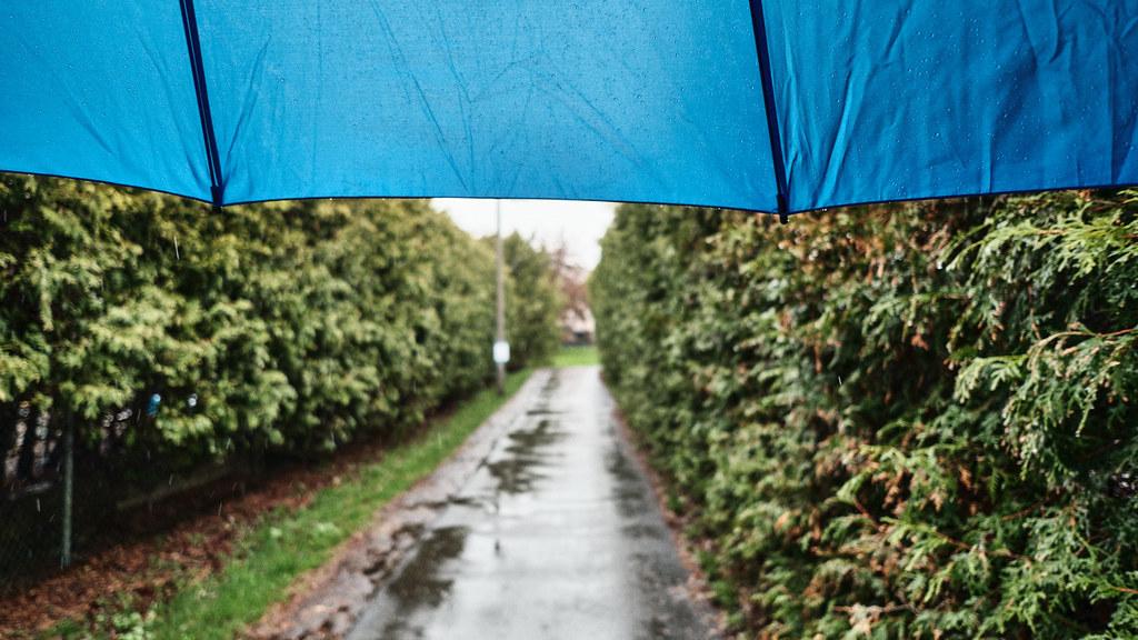 120/365 : Rain, rain, go away