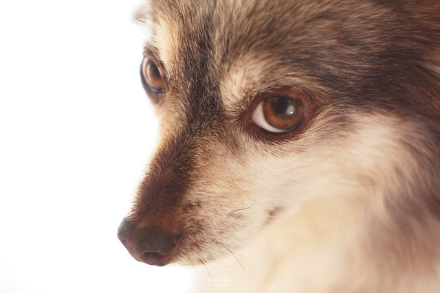 That look... [In Explore]