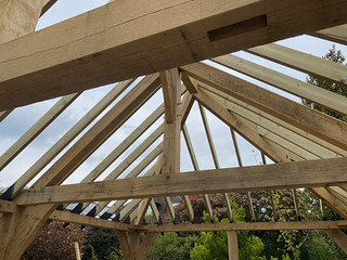 Softwood roof complete - 2