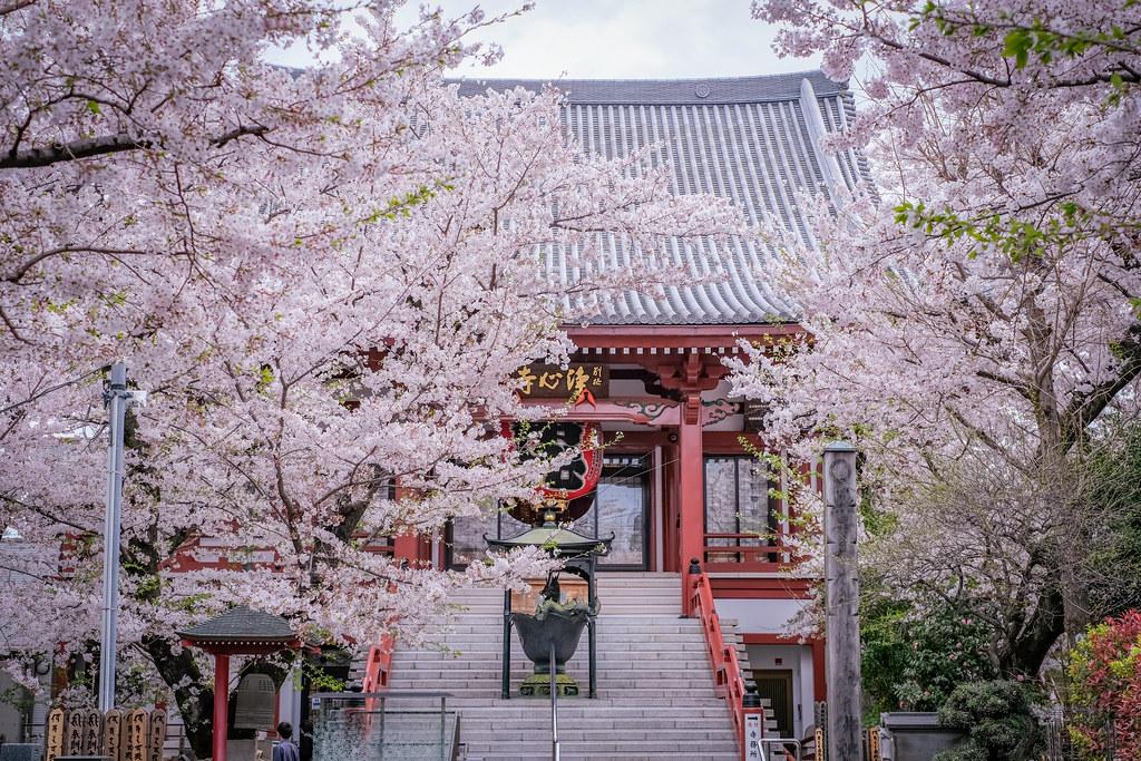 浄心寺2021