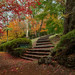Image: Autumn at Breenhold Gardens
