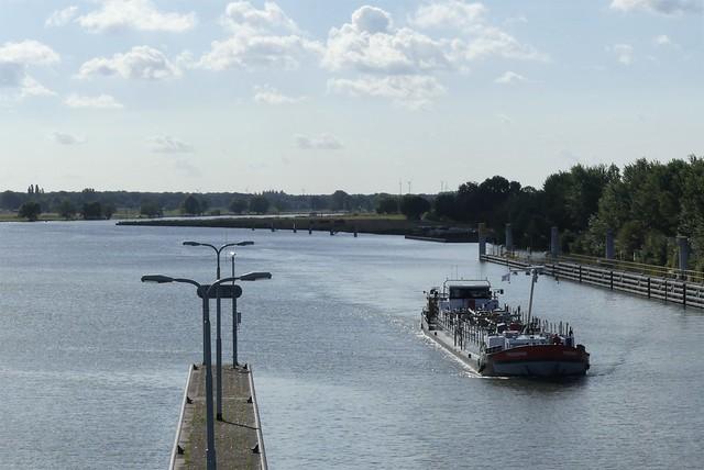 Proserpina-2-29-07-2020-sluis-Sambeek (2)