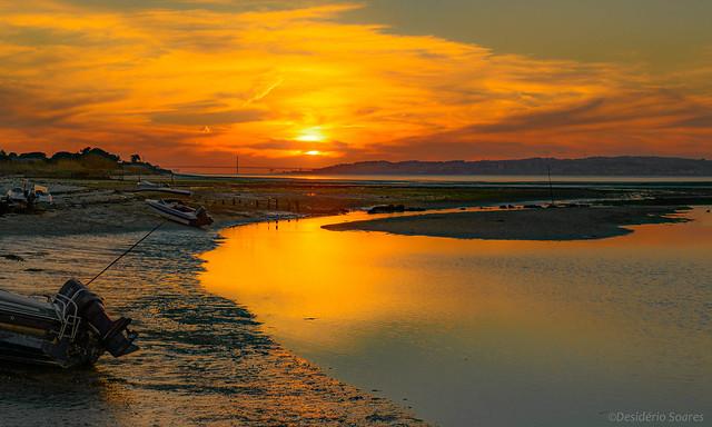 Samouco-Sunset