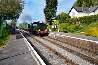 30925 Cheltenham Coming In Backwards