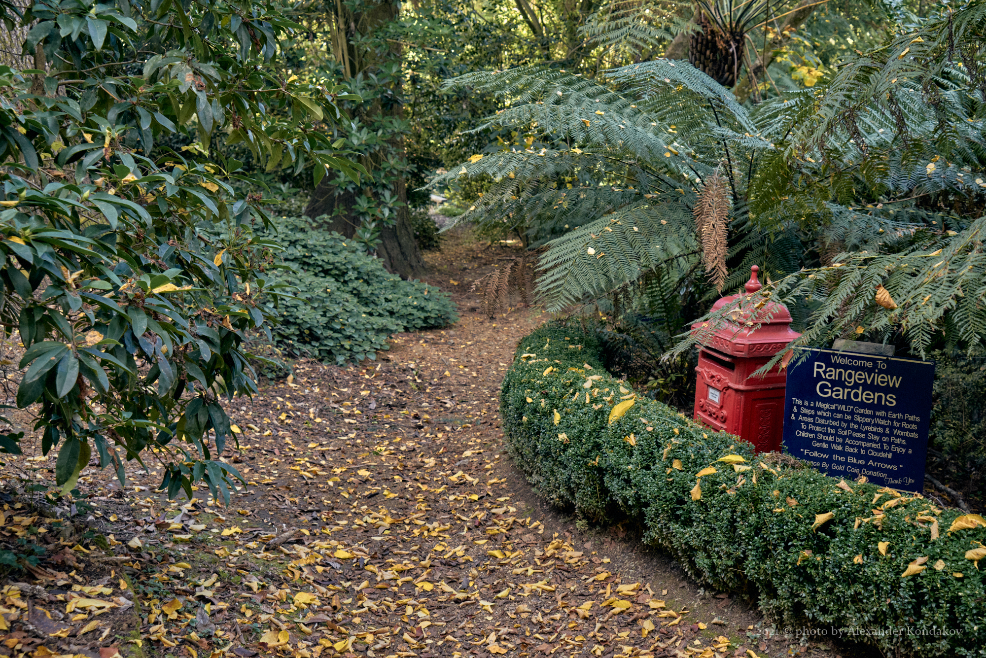 Cloudehill Garden & Nursery