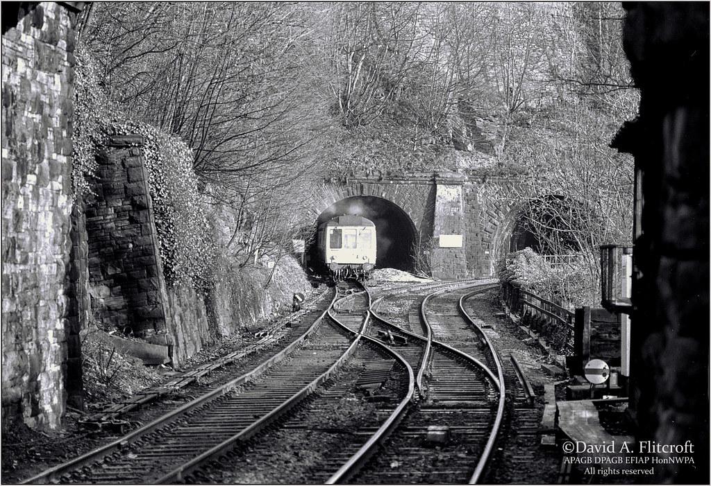 51150215573 6c138118db b - A mystery DMU tunnel!