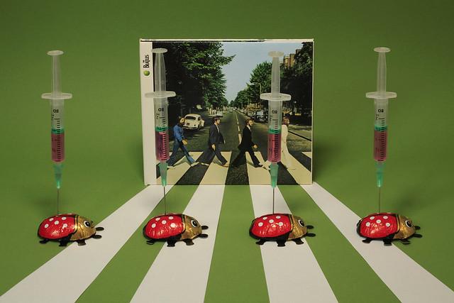 Beatles-beetles' vaccination / les hannetons du 1er mai / maikäfer