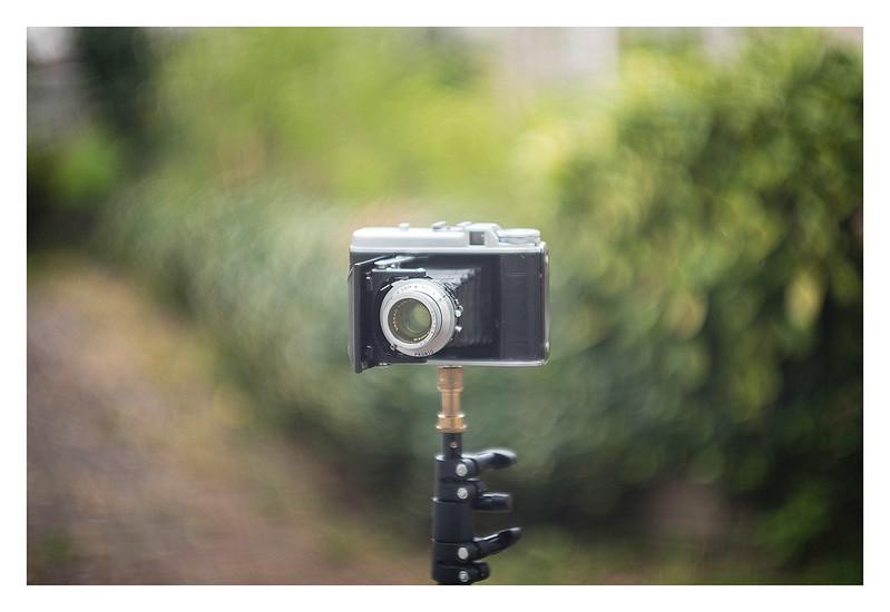 Leica Summarit 50mm f1.5 Bokeh