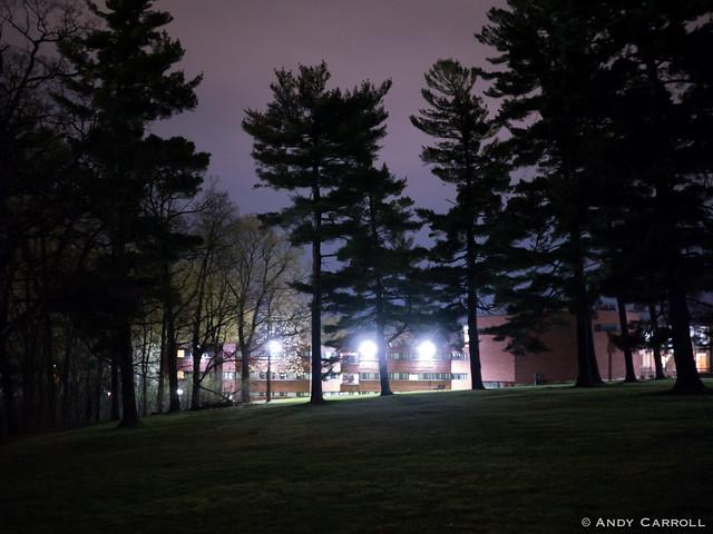 Pioneer Park, night