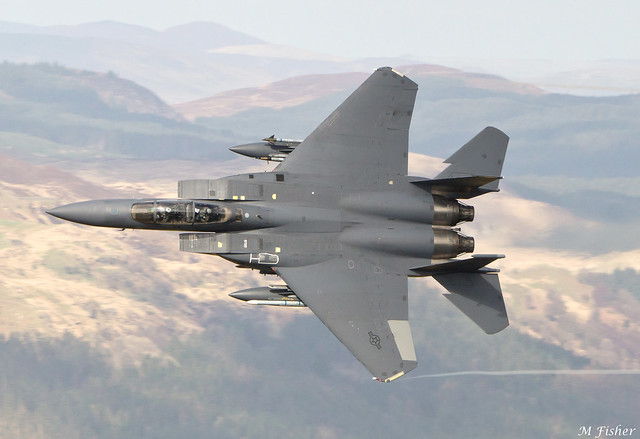 Eagle in the Welsh low fly
