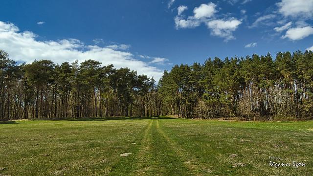 Landschaft bei Samtens - (Explore)