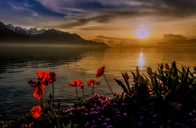 A spring Evening on the Shores of Lake Geneva