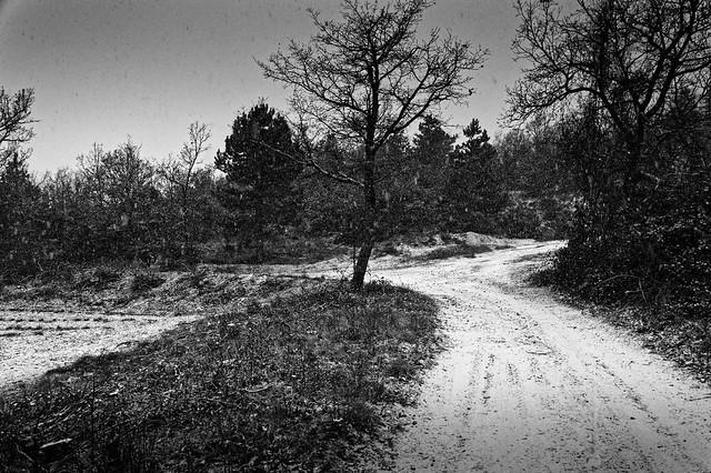 Mallefougasse, neige, B&W, 3