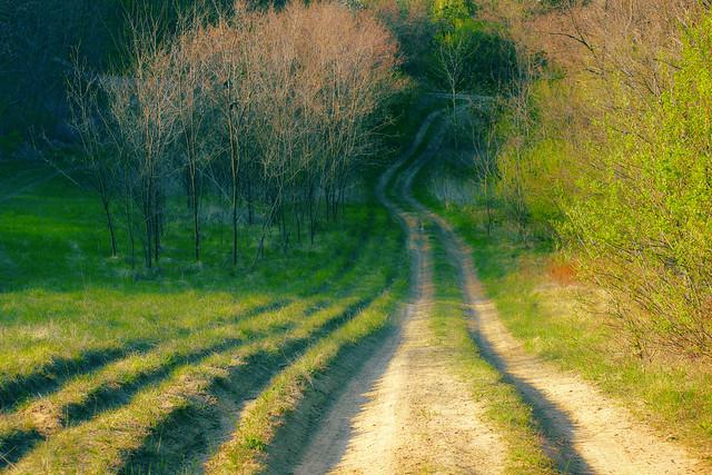 Down the hill / Le a dombról