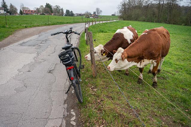 2021 Bike 180: Day 51, May 1