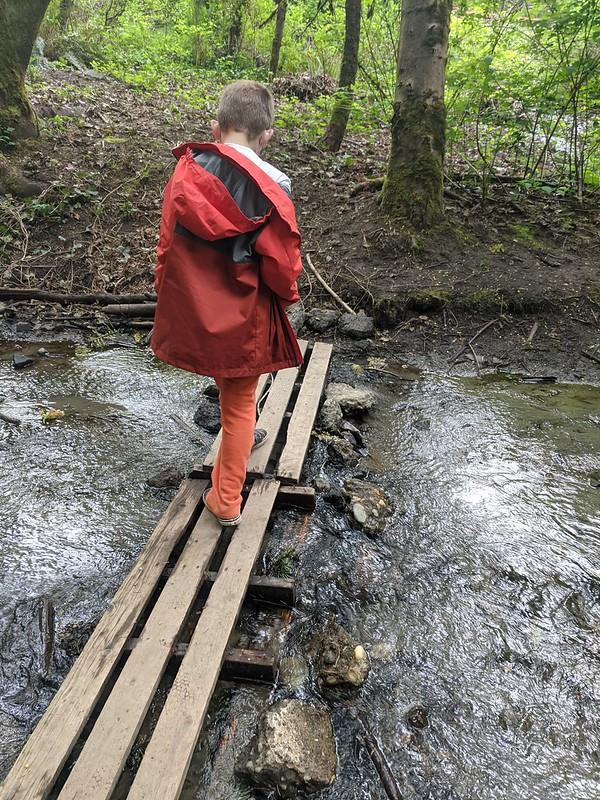 Kirkland Watershed: Creek