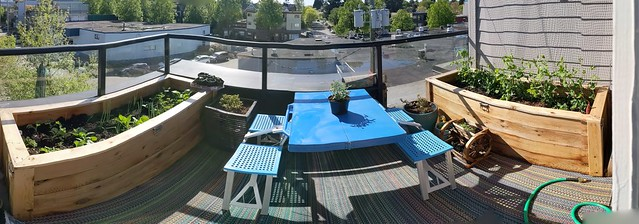Balcony Garden Panorama