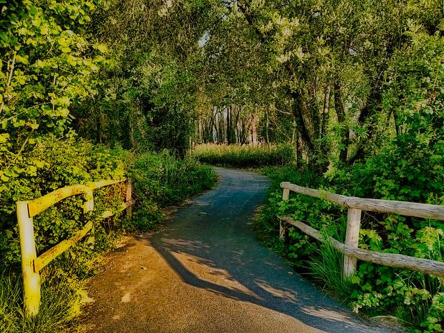Joli passage, nice path.