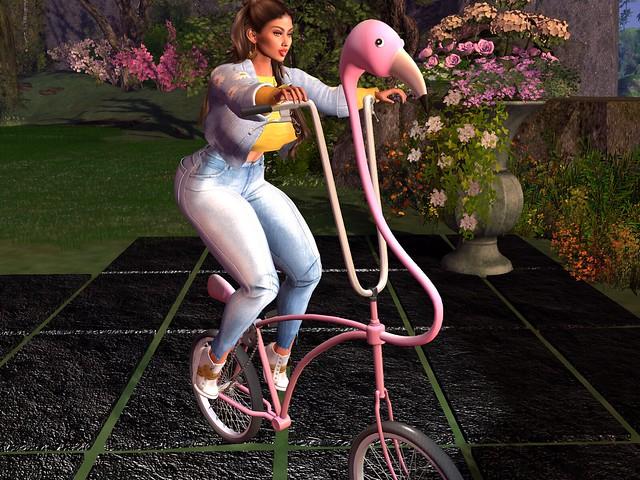 Brosia's Bike Ride - MadPea Flamingo Bicycle