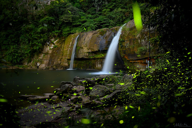 Fireflies and Night Waterfall
