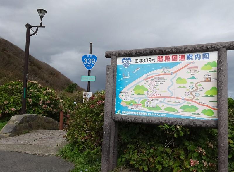 階段国道339号 (10)