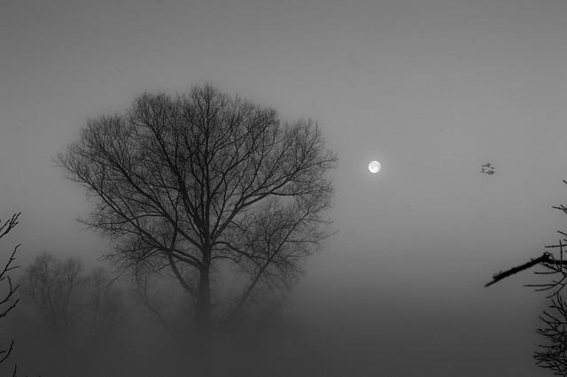 Winter in OHZ 001 sw