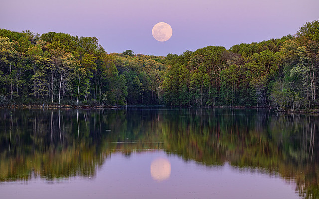 Pink Super Full Moon rising over Clopper Lake