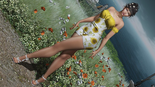 My Korner #559 - Daisies & Sunflowers!