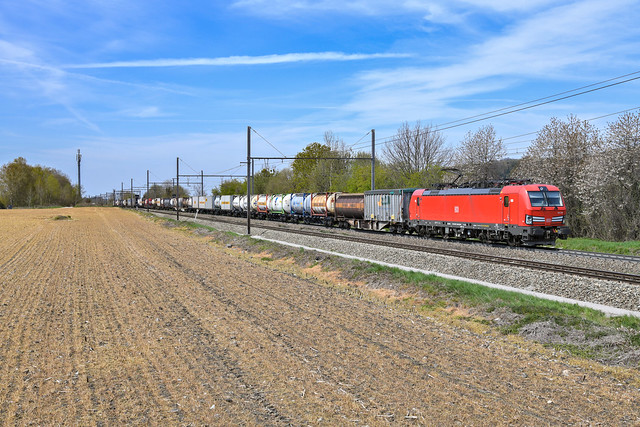 193 336 - db cargo - voeren - 24421