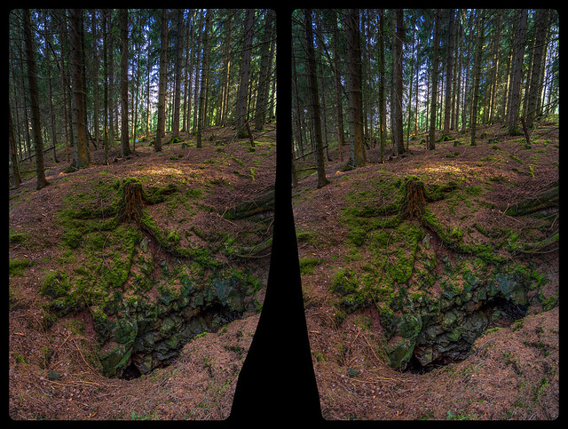 Open mine shaft in the woods 3-D / CrossView / Stereoscopy
